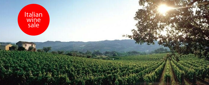 Italian wine sale