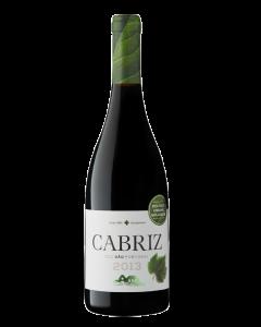 Cabriz Tinto Organic 2013