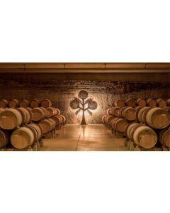 SEPTEMBER 3RD: Rioja & Ribera del Duero Masterclass