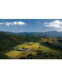 JUNE 5TH: ITALIAN WINE DINNER, HOSTED BY FEDERICO GIUNTINI MASSETI
