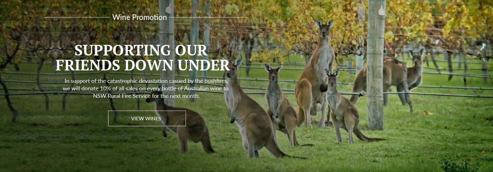 Kangaroos in wineyard