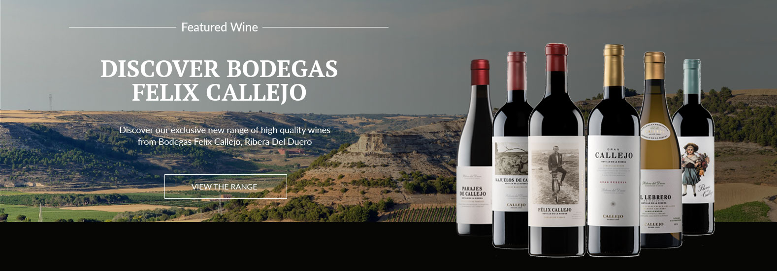 Display of a range ofBodegas Felix Callejo Wines in front of image of their vineyard - valley's and hills with vines.
