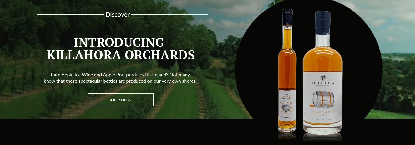 Introducing Killahora Orchards - Irish wine in front of vineyard