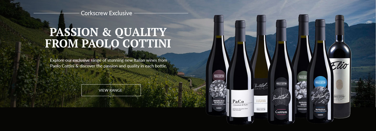 Selection of Paolo Cottini wines displayed in front of vineyard view