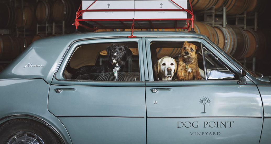 New Zealand Superstars -10 Reasons To Choose Dog Point Wines
